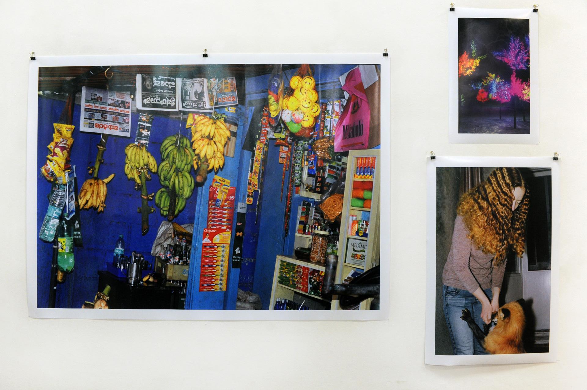 Installation view, Albert Elm
