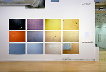 Julia Bauer, Installation view