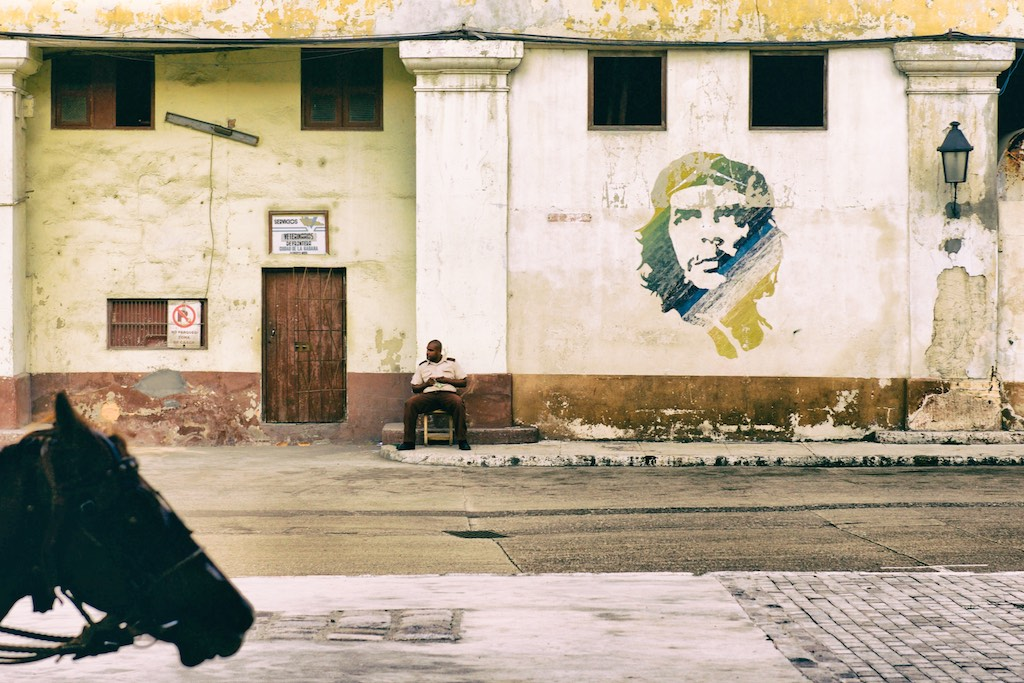 Image of Horse Head, Security Guard and Che Guevara by Iain Clark