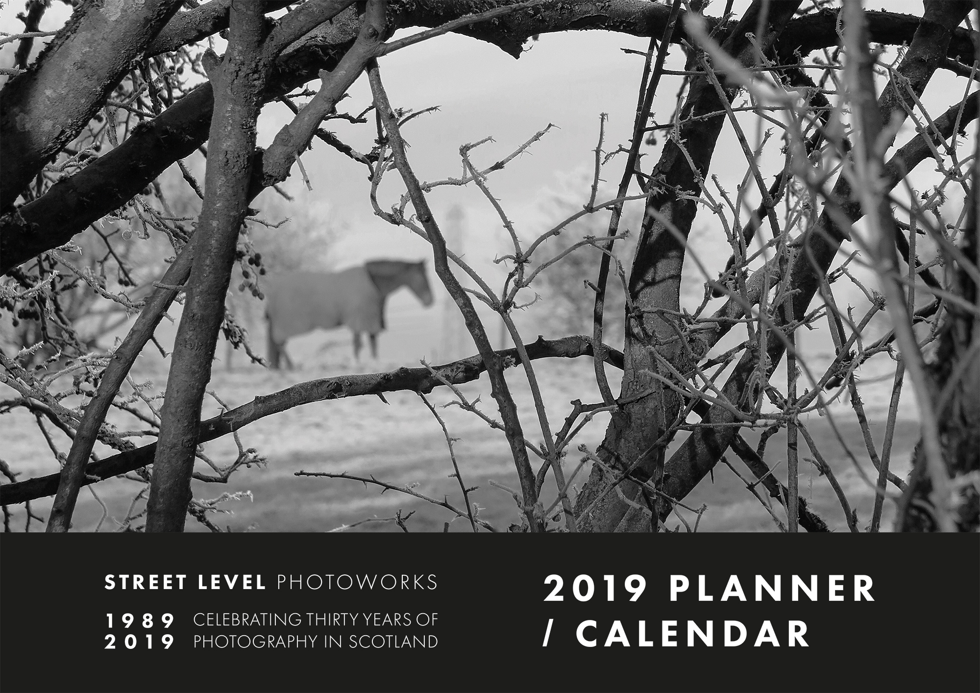 Image of Street Level Photoworks Calendar 2019 by Fiona Steel (Cover Image)