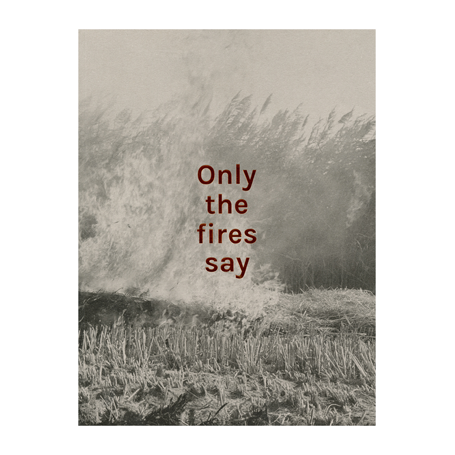Image of Only the Fires Say (Book) by Alan Eglinton