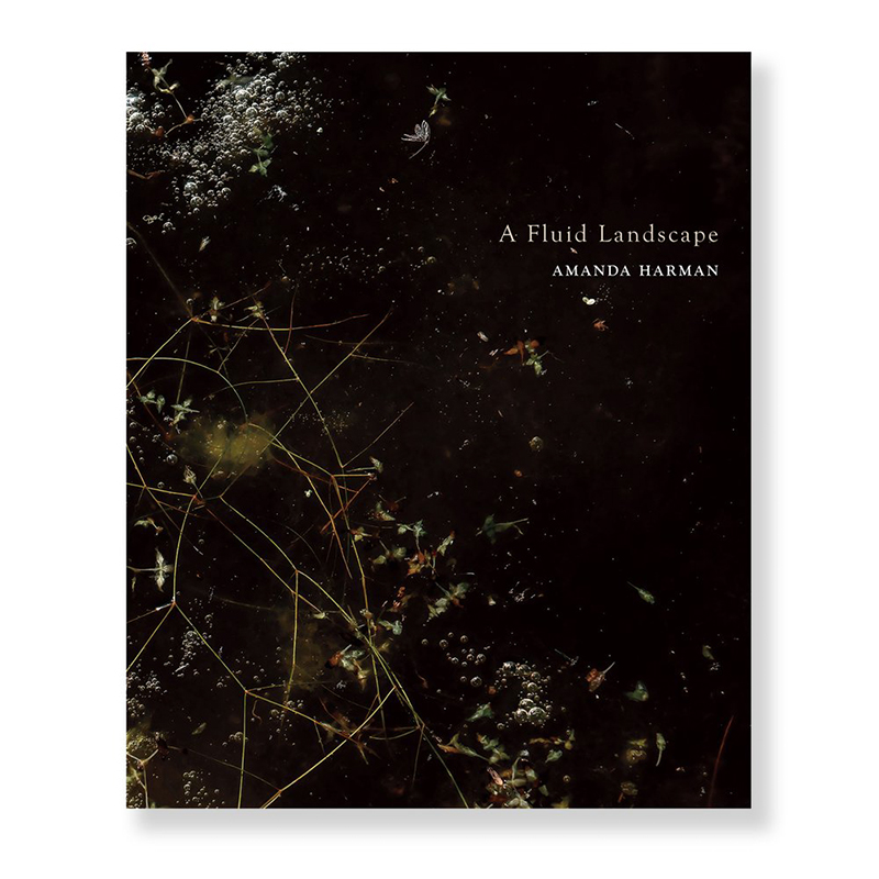 Image of A Fluid Landscape (Book) by Amanda Harman