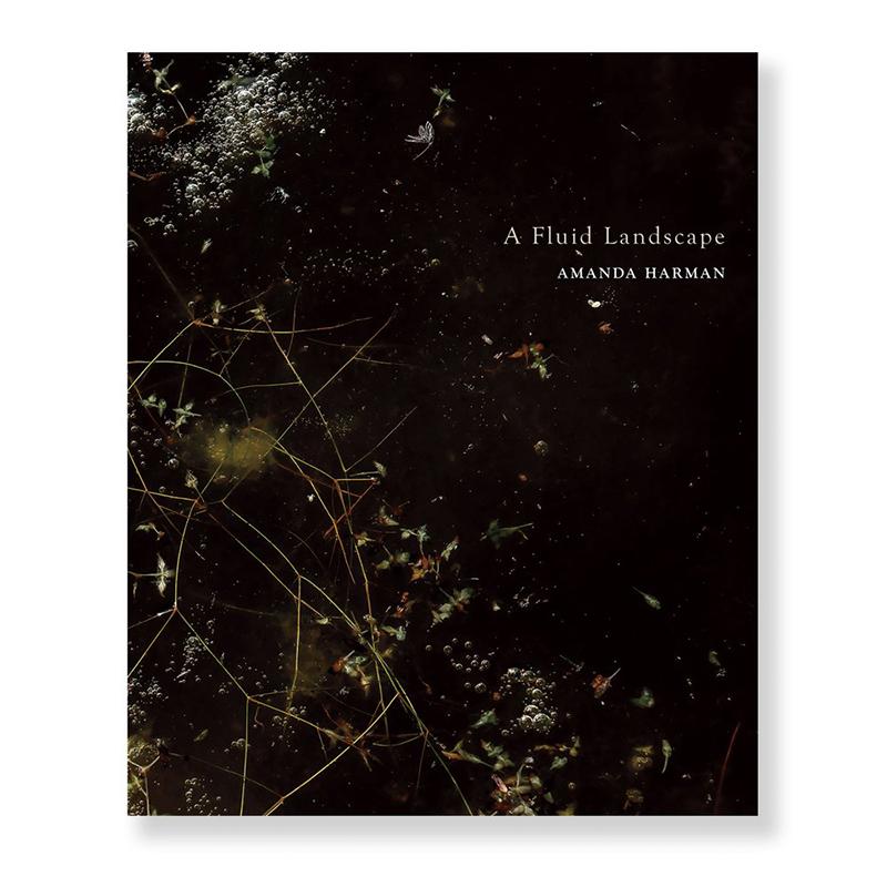 Image of A Fluid Landscape (Book) by Amanda Harman
