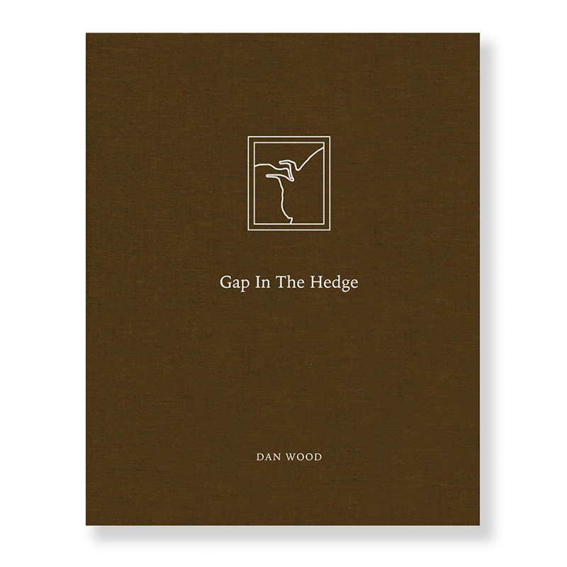 Image of Gap in the Hedge (Book) by Dan Wood