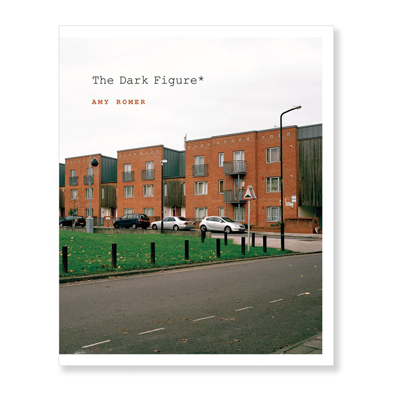 Image of The Dark Figure* (Book) by Amy Romer