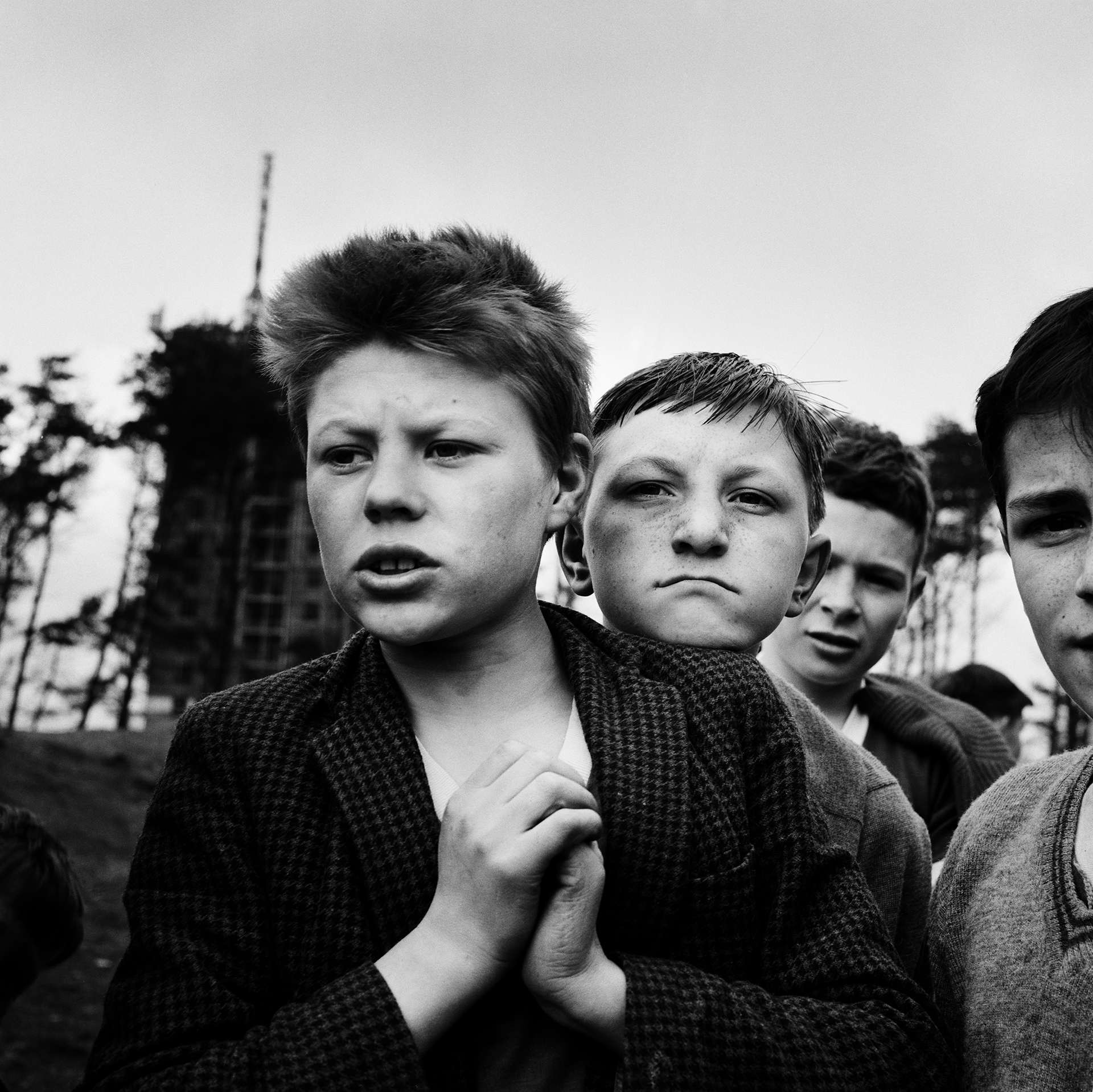 Image of The Castlemilk Lads (1963) by Oscar Marzaroli