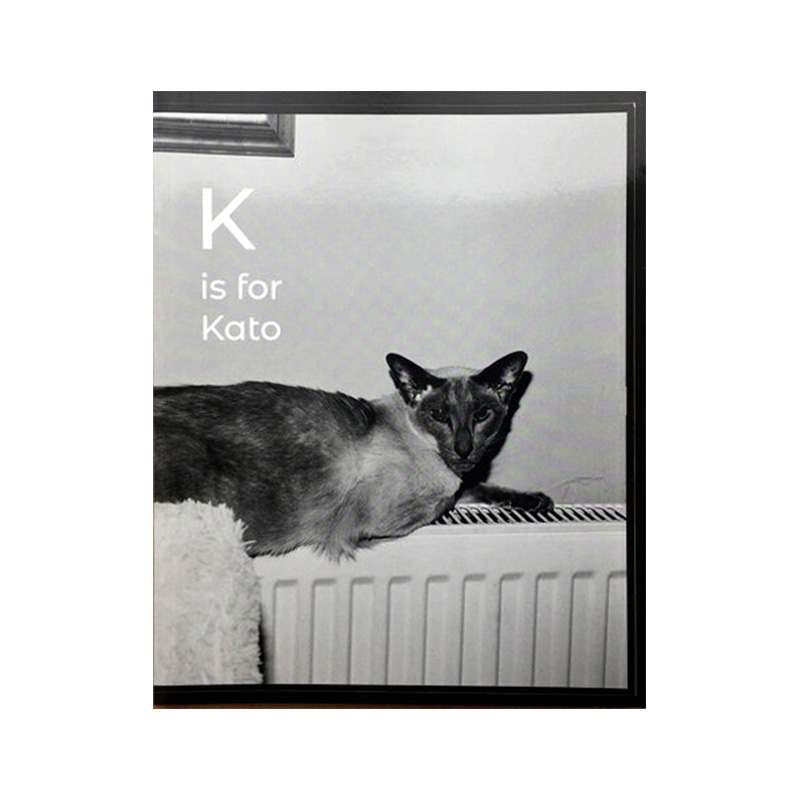 Image of K is for Kato (Book) by Margaret Salmon
