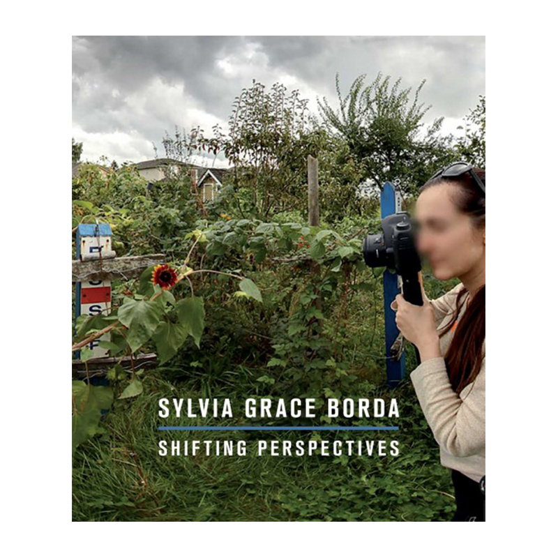 Image of Shifting Perspectives (Book) by Sylvia Grace Borda
