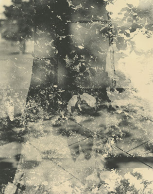 Lorna Macintyre - 'Concrete/Beech/Green Tea'