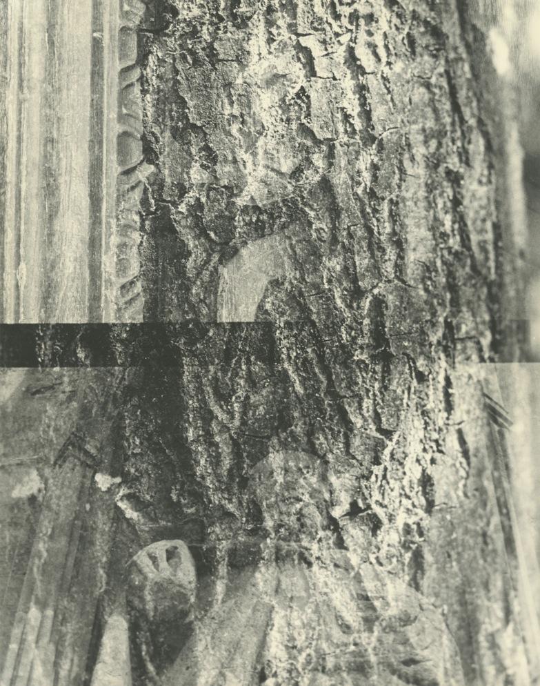 Lorna Macintyre - 'Limestone/Oak/Cammomile'